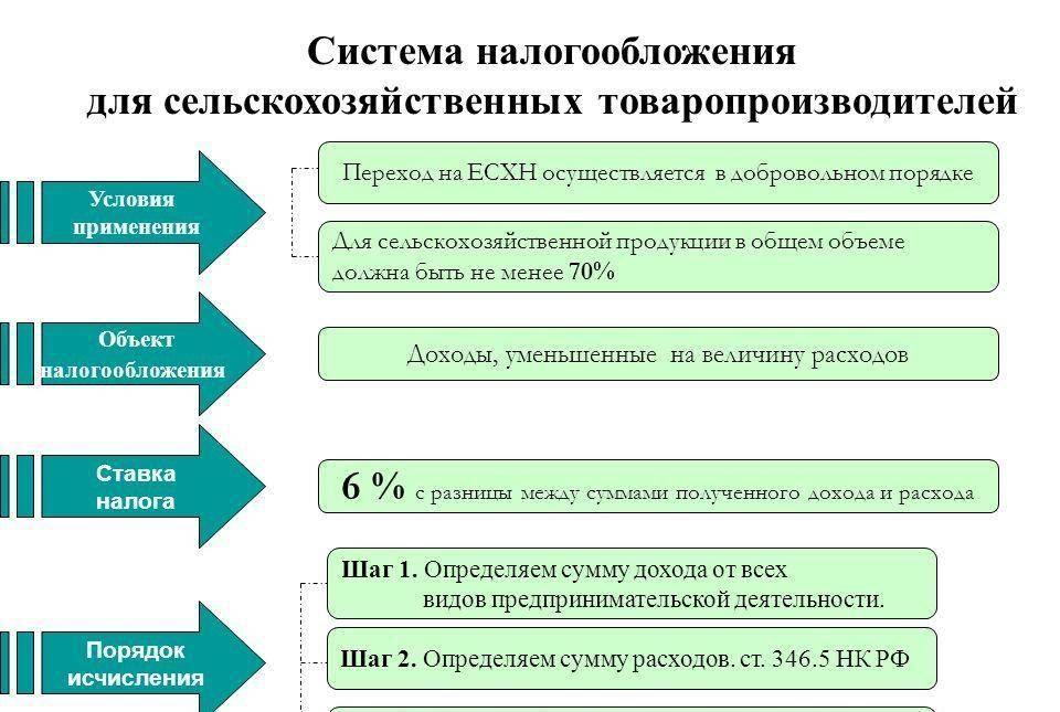 Налогообложение есхн в 2020 году: актуальные ставки