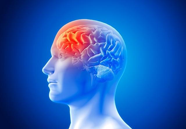 Инсульт ствола головного мозга: симптомы, лечение и последствия