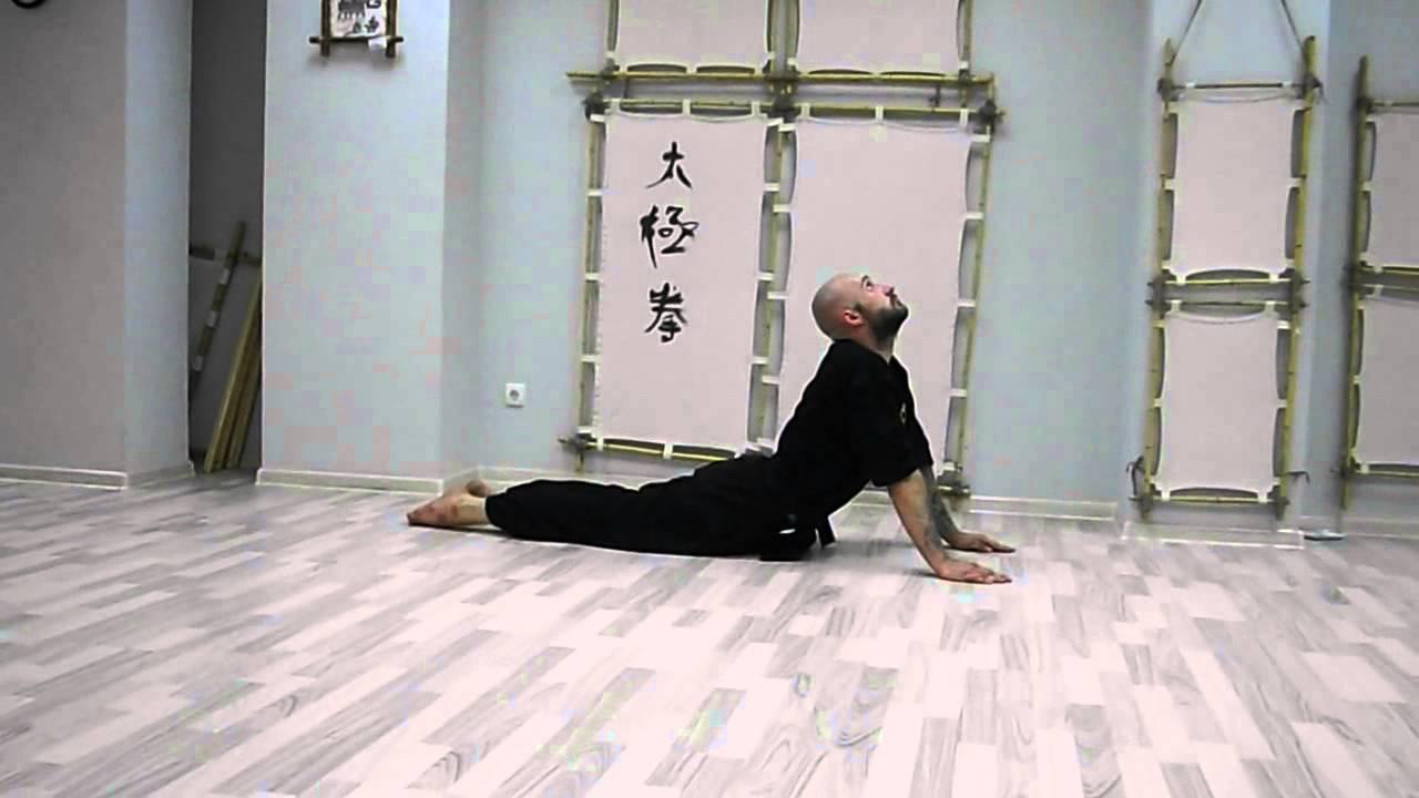 13.каково содержание термина«ци»в сочетании«цигун». секреты китайской медицины. 300 вопросов о цигун.