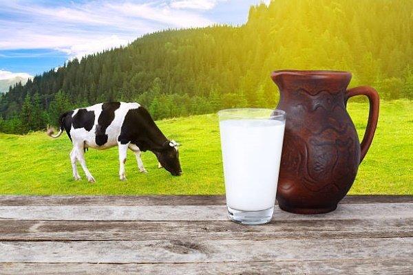 Цельное молоко: состав, польза, вред, рецепты