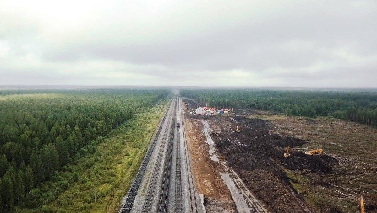 «новый шиес». как жители башкирии сражаются с госбизнесом за чудо природы  — секрет фирмы