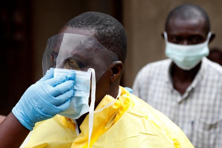 Откуда взялся вирус эбола? происхождение и история вируса эбола
