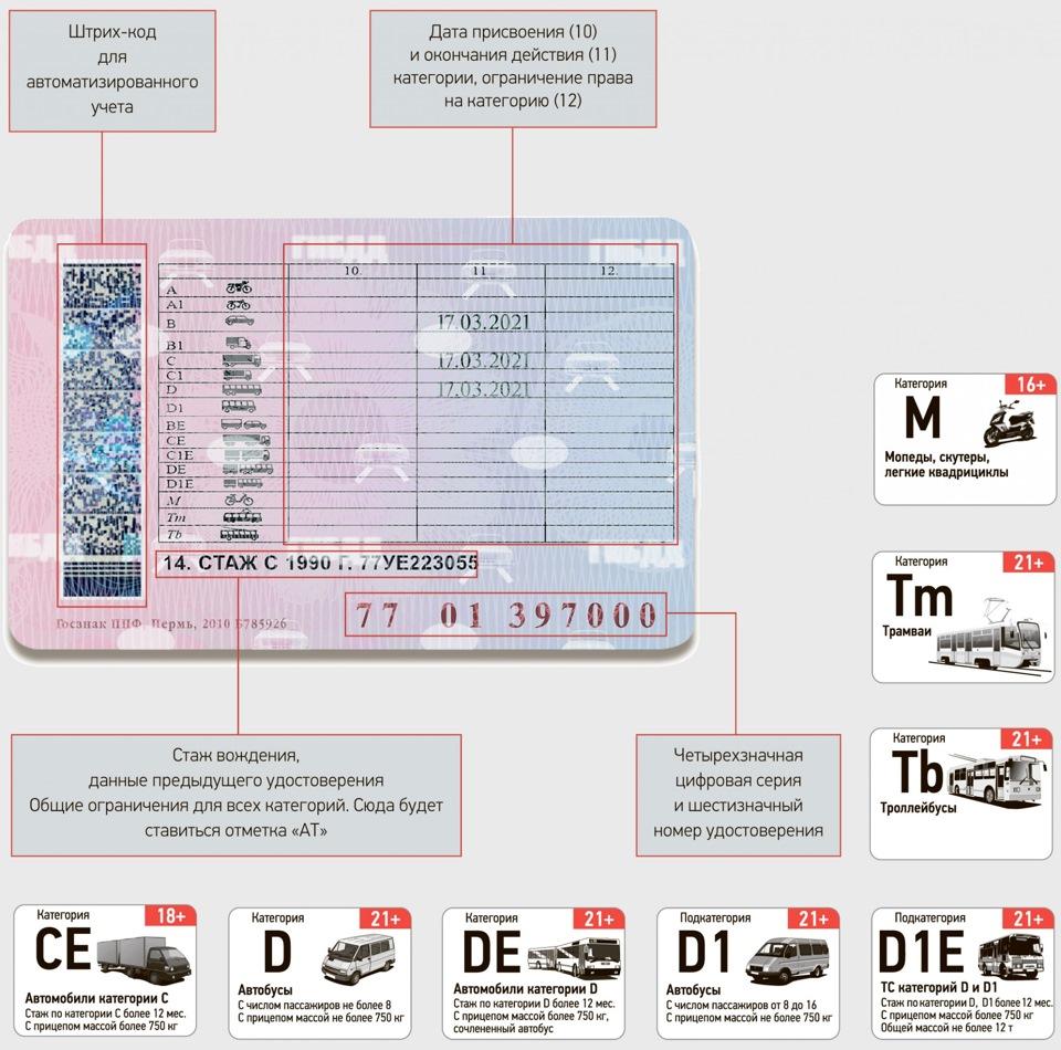 Категория а1 в водительских правах в 2020 году: значение и порядок оформления   помощь водителям в 2020 и 2021 году