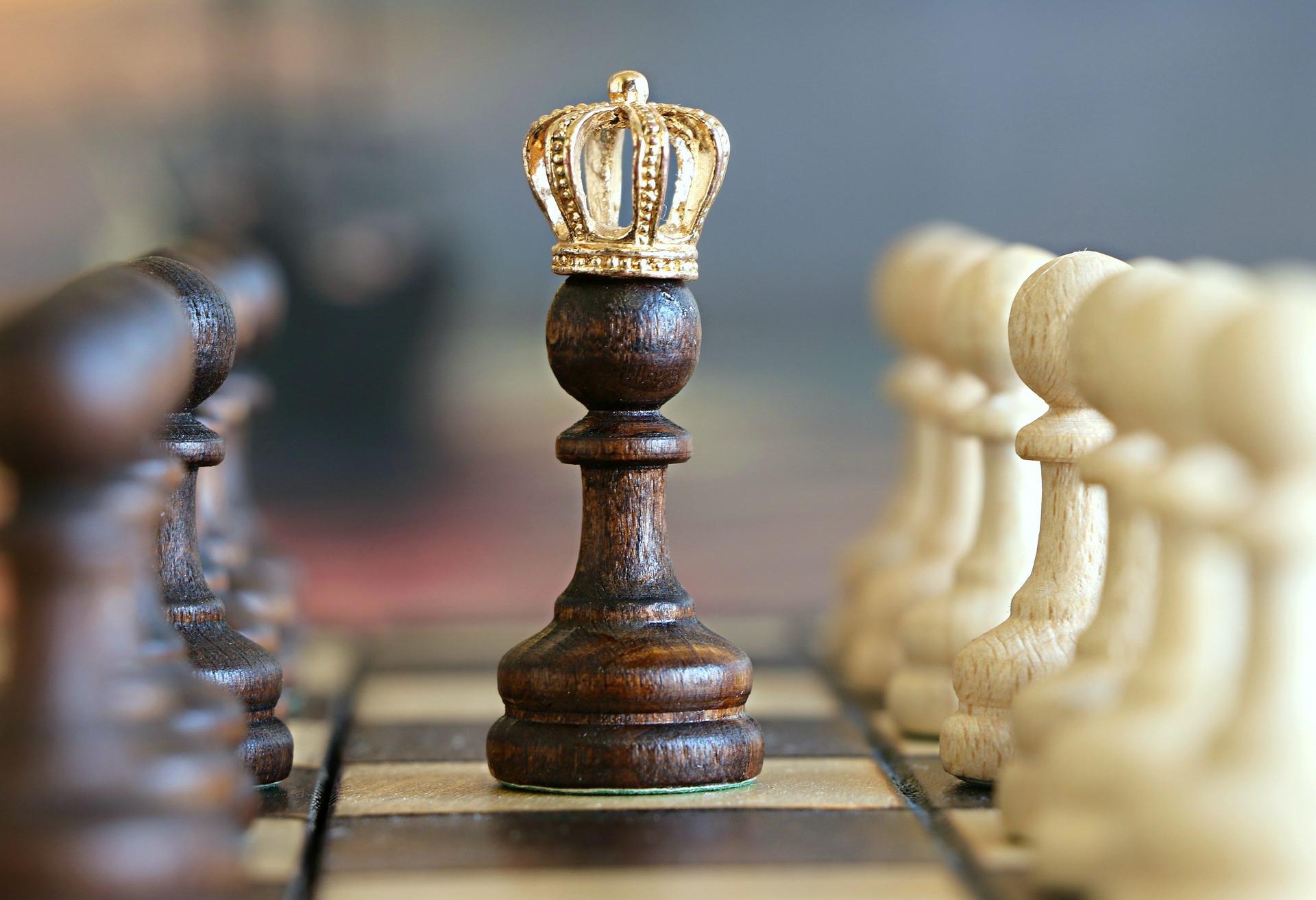 Шахматы что это за вид спорта, история появление, особенности