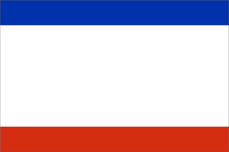 Флаг что это? значение слова флаг