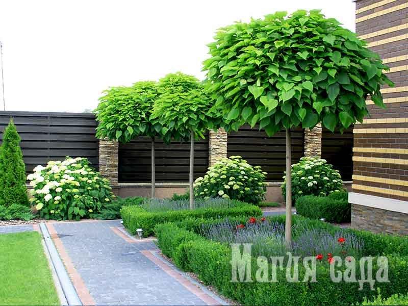 Топ-5 ландшафтных стилей для загородного участка