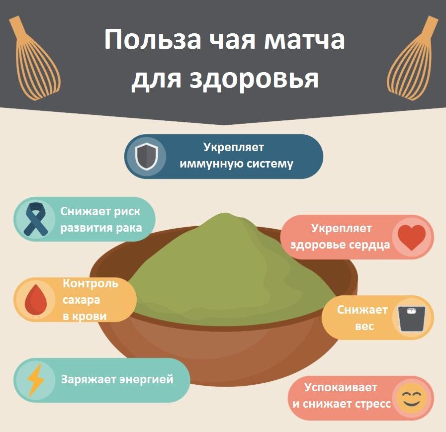 Матча вместо кофе: почему вам стоит его попробовать | кто?что?где?