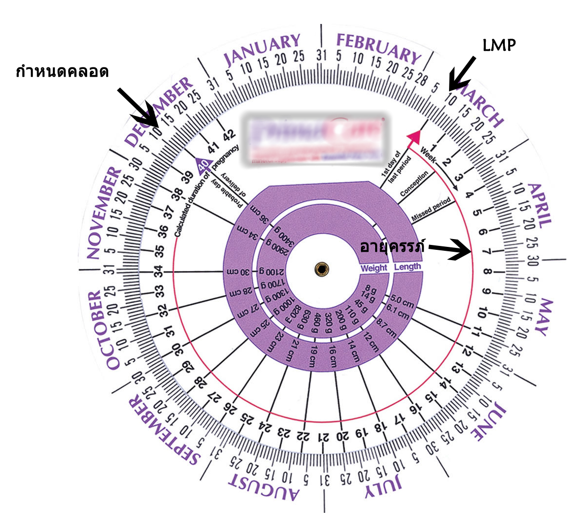 Pdr инструмент: принцип технологии и процесс рихтовки