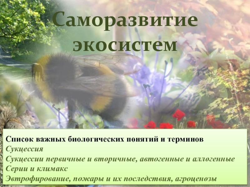 Природное сообщество: виды, роли, структура и влияние человека — природа мира