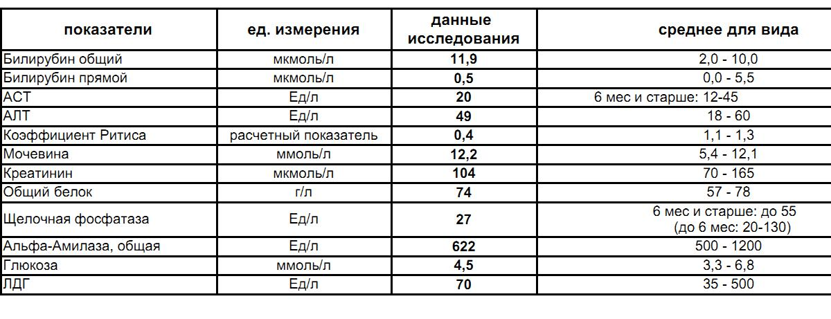 Соотношение алт и аст: норма показателей анализа