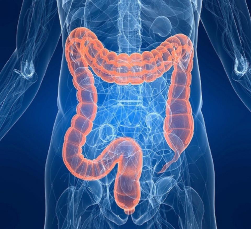 Болезнь крона - симптомы и лечение - симптомы, диагностика, лечение, профилактика