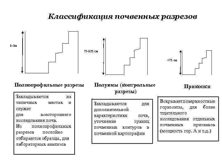 Описание почвенного профиля по морфологическим признакам.