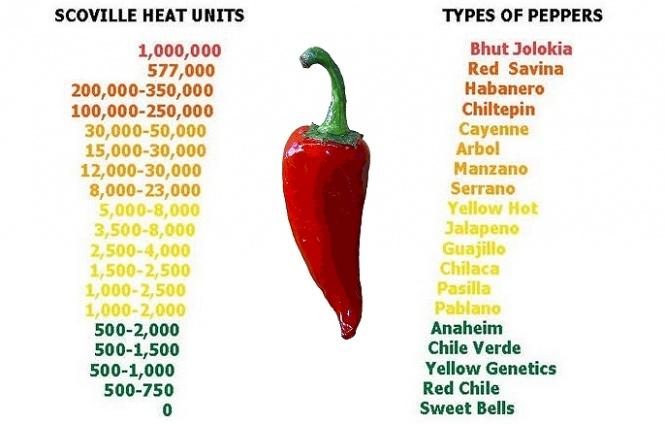 Кайенский перец - полезные и опасные свойства кайенского перца