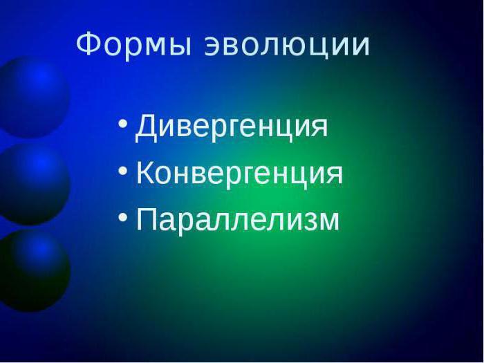 Что такое дивергенция простыми словами