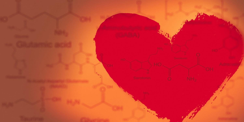 Любовь с научной точки зрения. занимательная психология