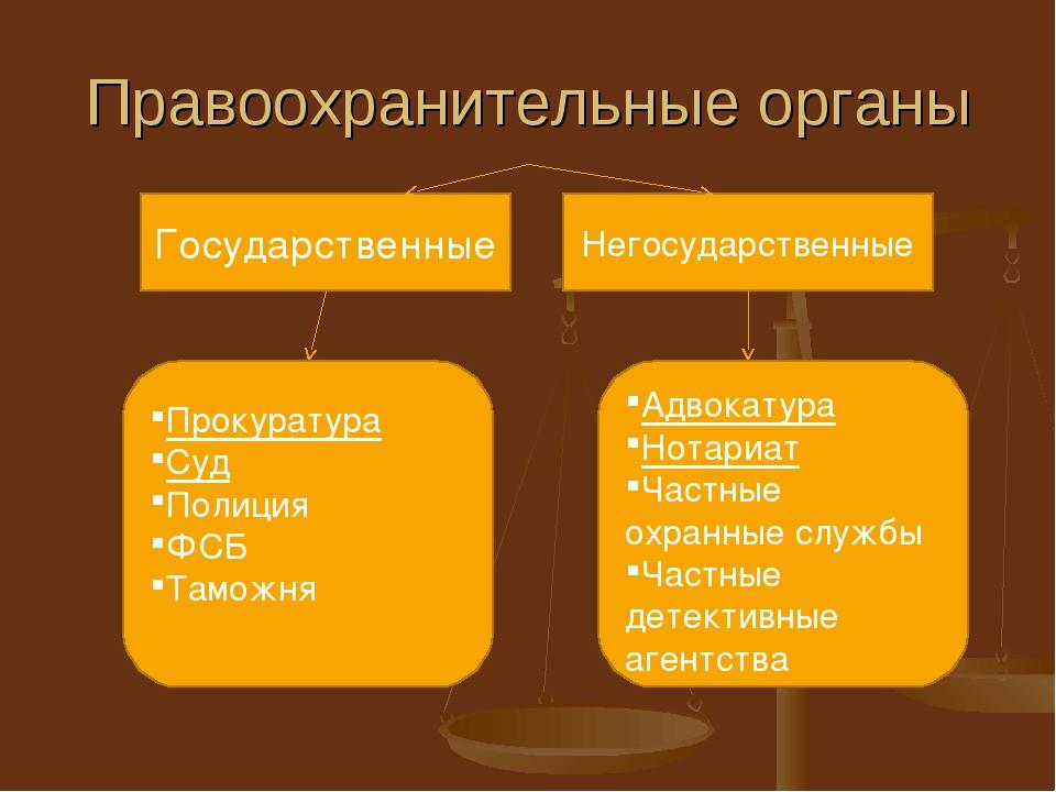 Понятие и система правоохранительных органов рф - правоохранительные органы рф (федулов а.в., 2010)