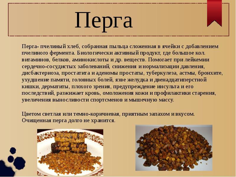 Пчелиная перга: полезные свойства, как принимать (мужчинам, женщинам, беременным, детям), противопоказания.