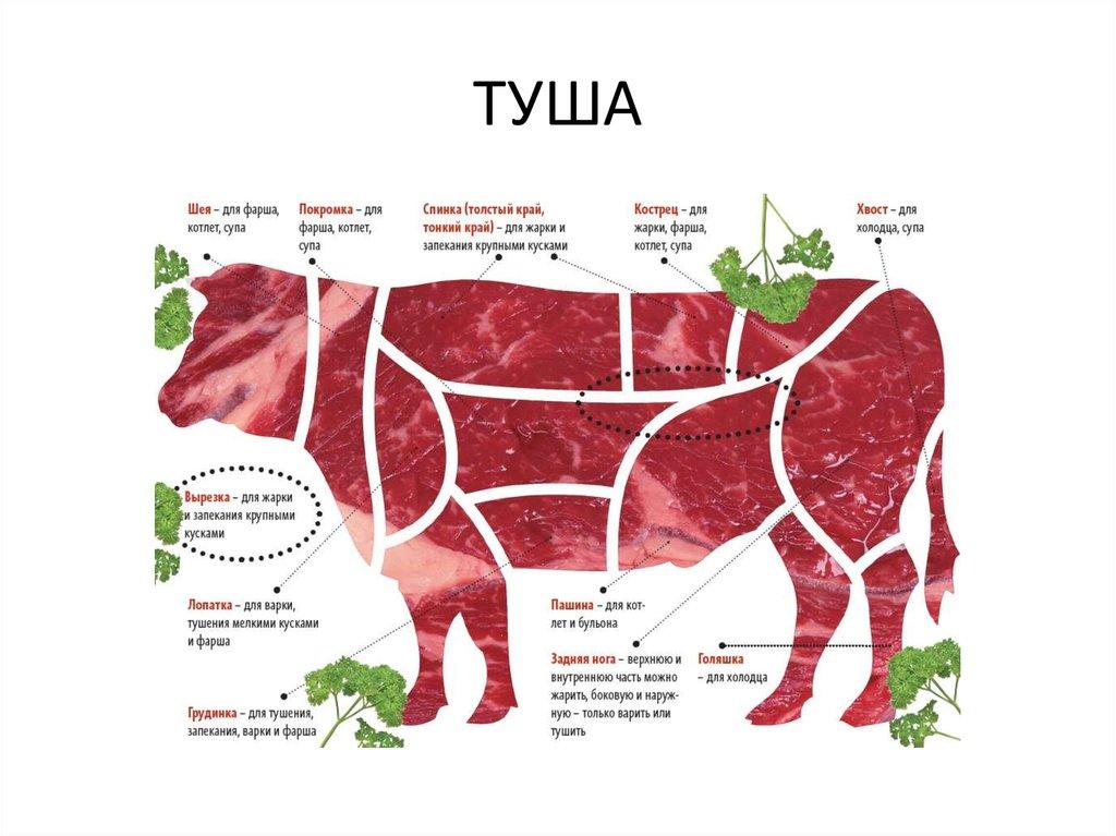 Какие части говядины для стейка будут идеальны? виды и названия классических стейков – рецепты с фото на malosoli.ru