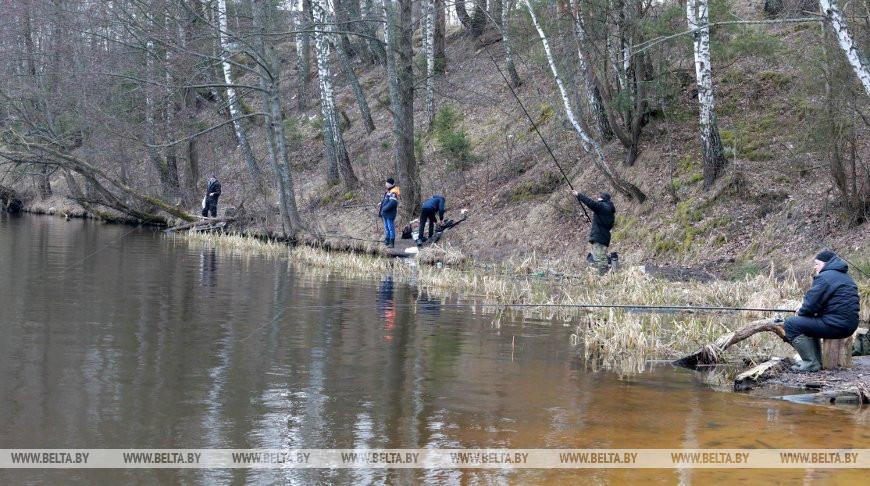Что рыбак должен знать о нересте