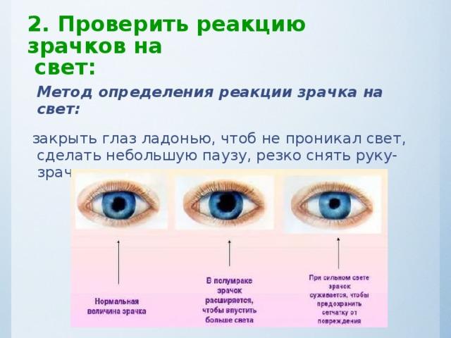Что такое зрачок глаза, его функции и строение oculistic.ru что такое зрачок глаза, его функции и строение