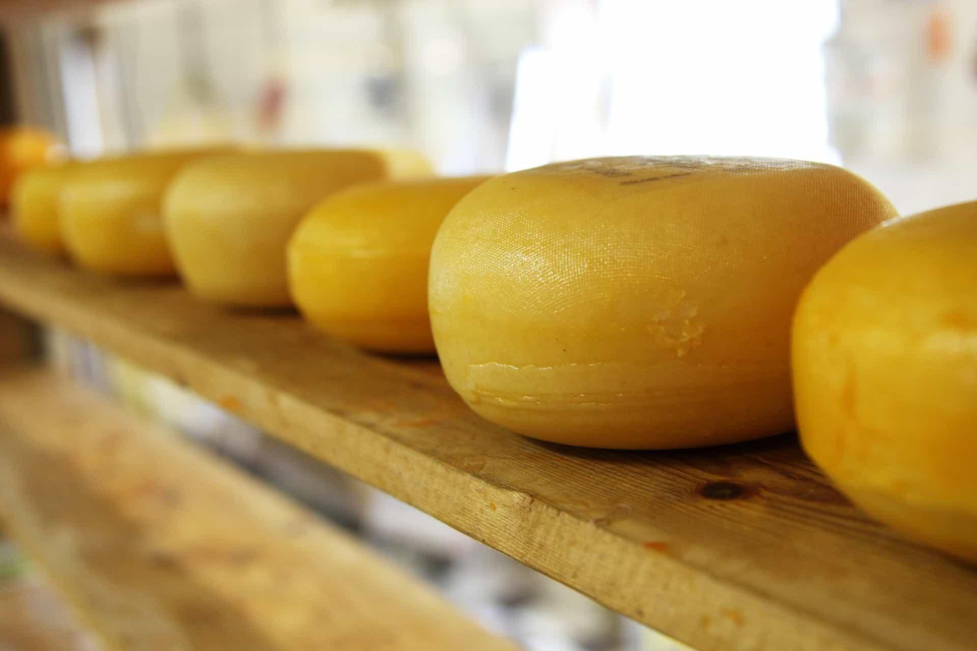 Сыр пармезан: история, процесс производства, сорта, аналоги