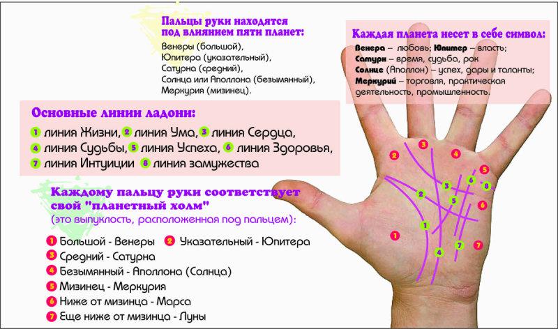 Гадание по руке: как узнать свою судьбу с помощью хиромантии (6 фото) — нло мир интернет — журнал об нло