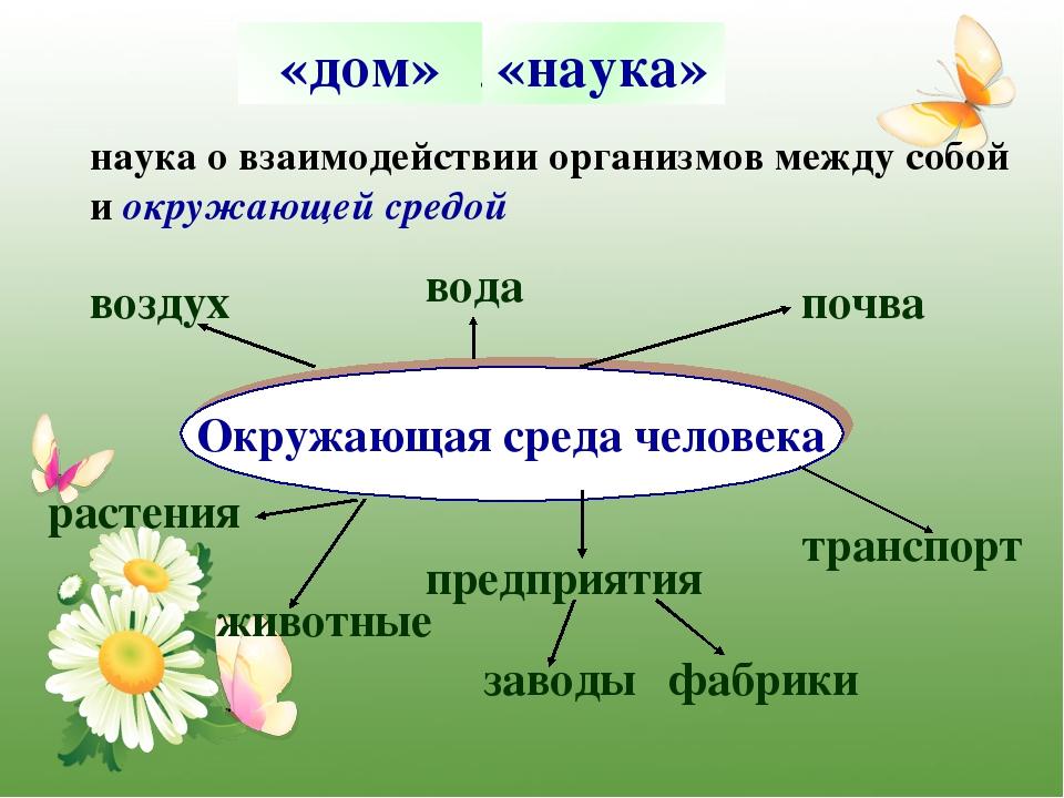 Окружающий мир 3 класс 1 часть что такое экология стр. 24 - 28