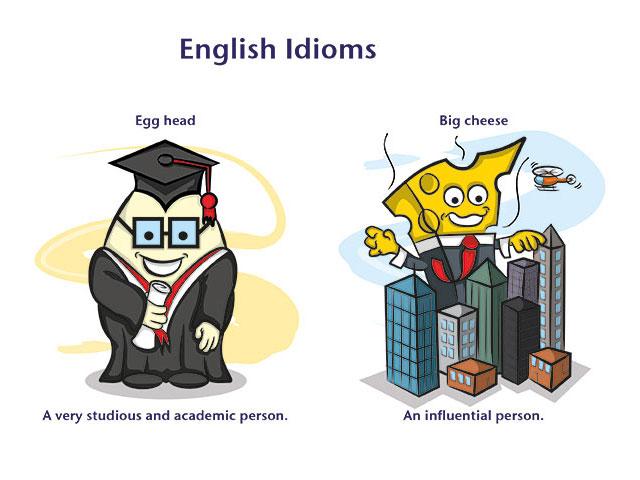Идиомы английского языка