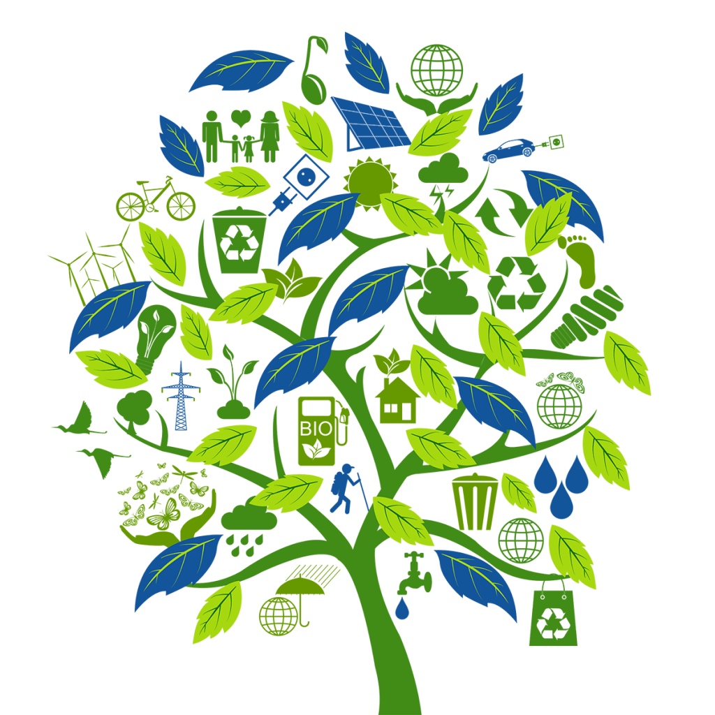 Определение, значение и проблема изменения окружающей среды