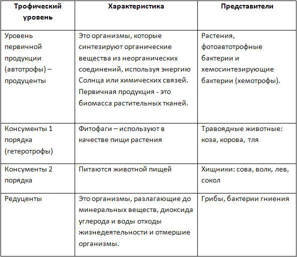 Биоценоз (биотоп): определение, понятие, картинки, примеры, что это такое, кто ввел термин