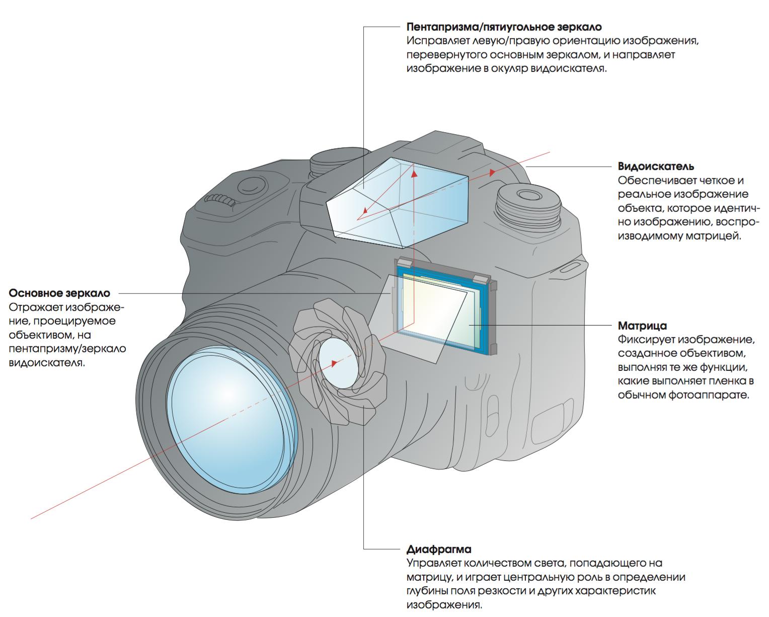 Как устроен цифровой зеркальный фотоаппарат