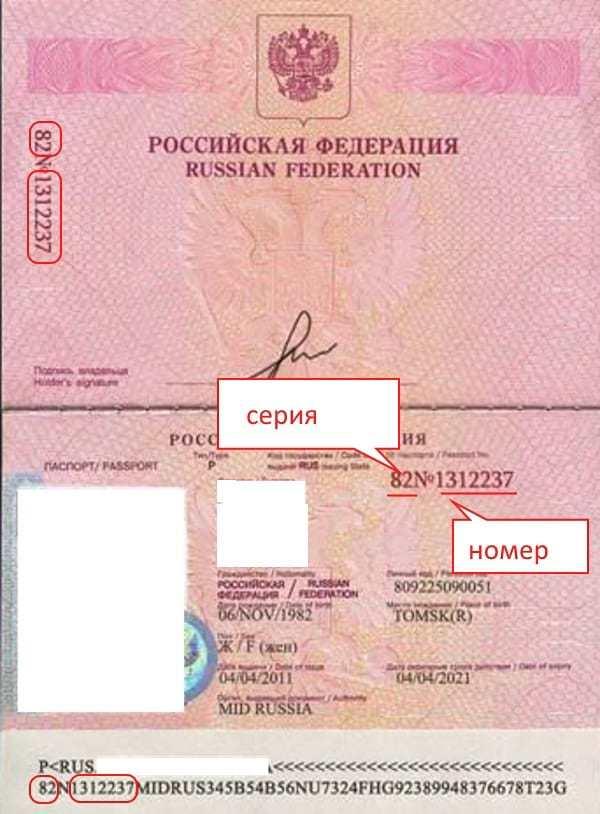 Как записывать серию и номер паспорта. серия паспорта и личный номер – что означает и где посмотреть - ваши накопления