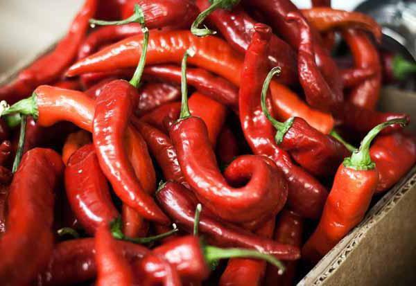 Как выглядит кайенский перец: что это такое, польза и вред, отличия от перца чили