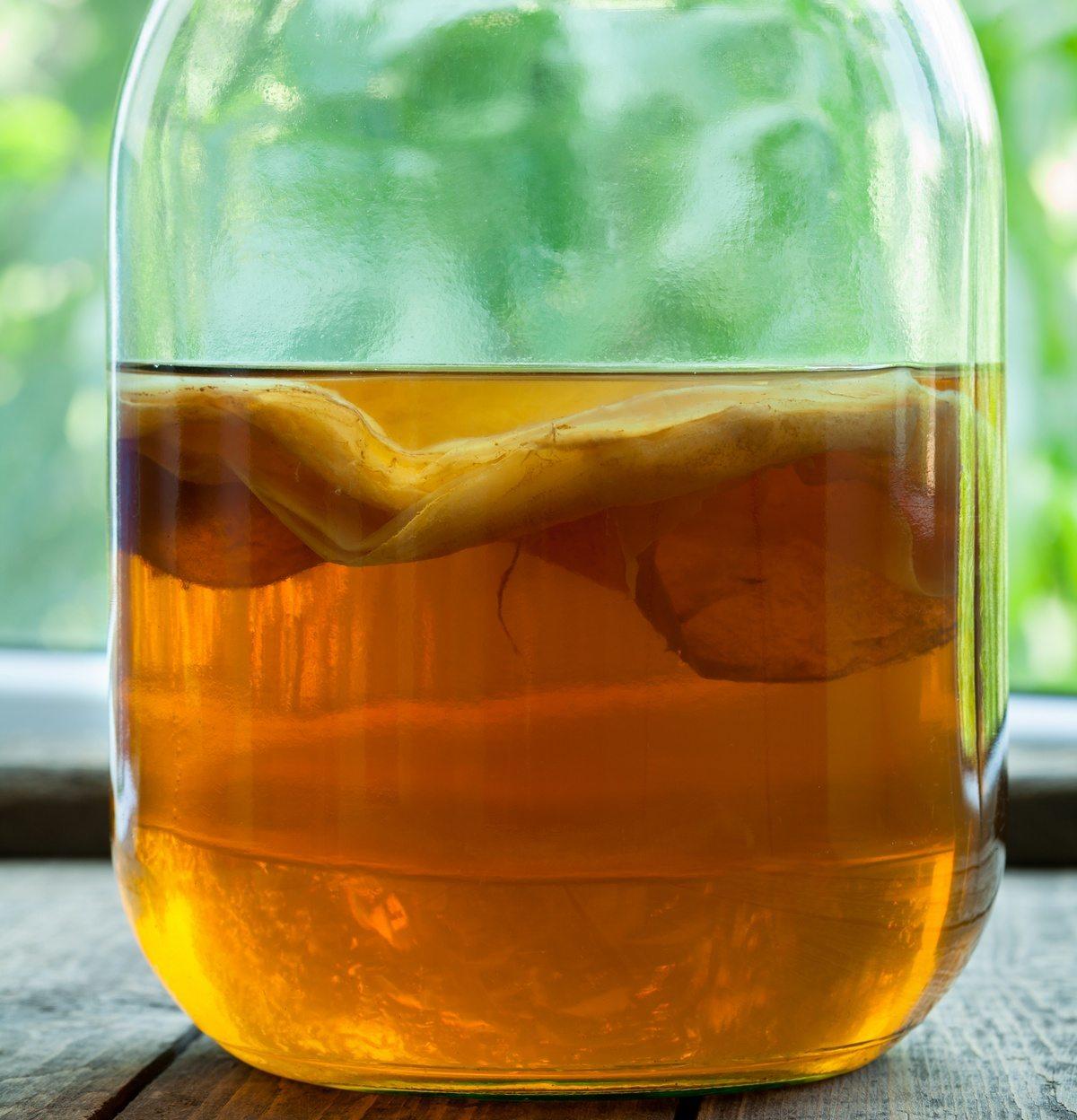 Специалисты назвали чайный гриб одним из главных фуд-трендов 2020 года. что происходит с организмом, если пить камбучу каждый день