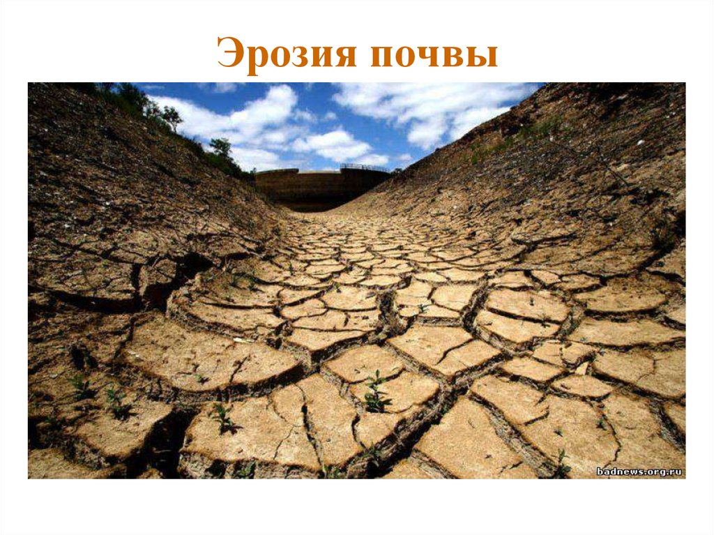 Эрозия (геология) — википедия. что такое эрозия (геология)