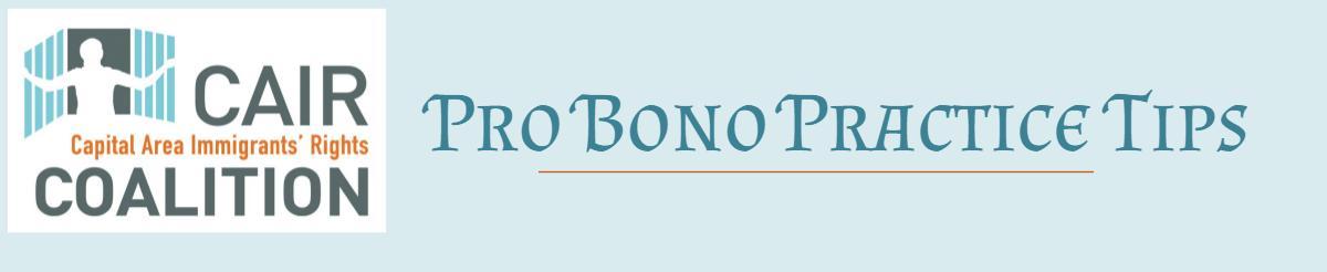 Рro bono (про боно)
