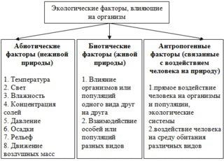 Среды обитания организмов. экологические факторы: абиотические, биотические. антропогенный фактор. их значение