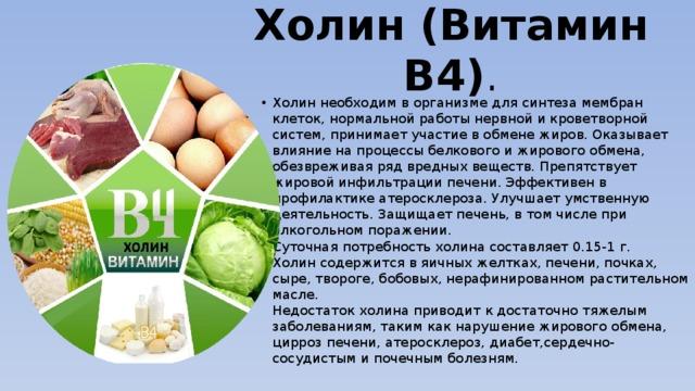 Витамин b4(холин) в каких продуктах содержится, полезные свойства