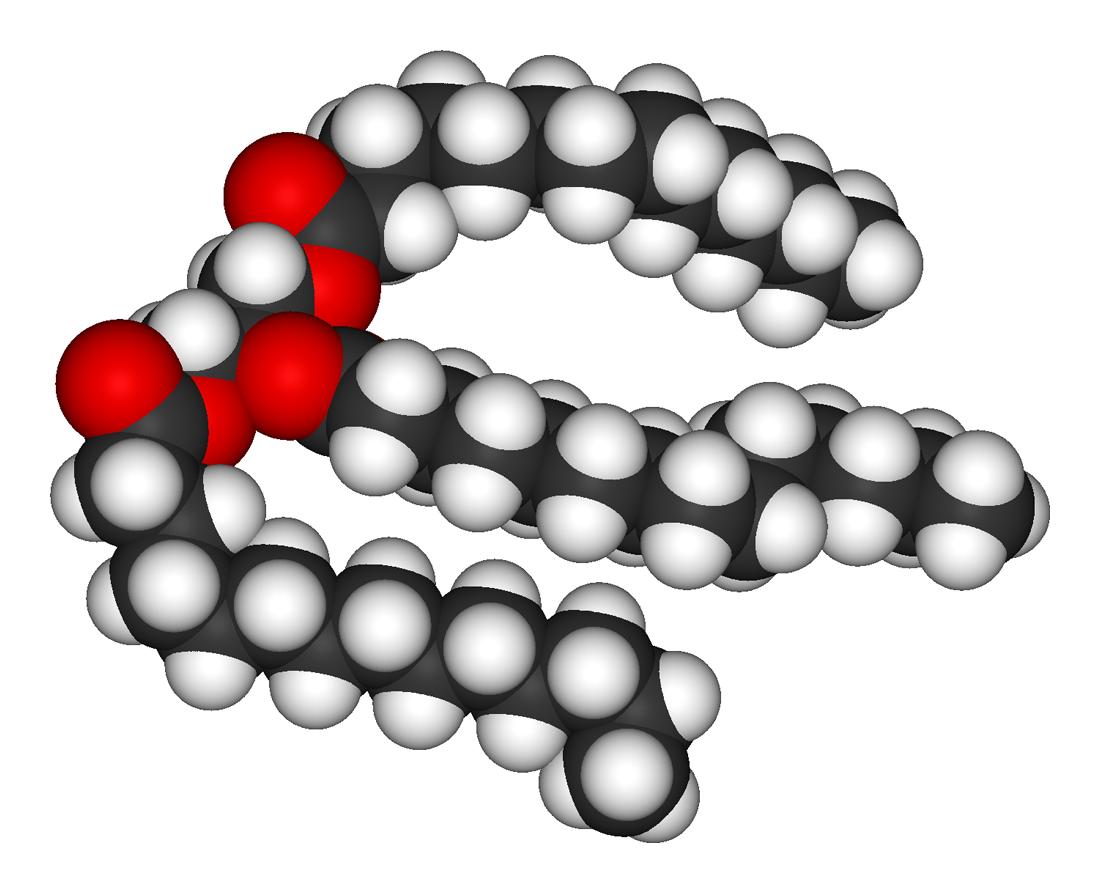 Анализ на тиреоглобулин (тг): показания, расшифровка, подготовка к анализу