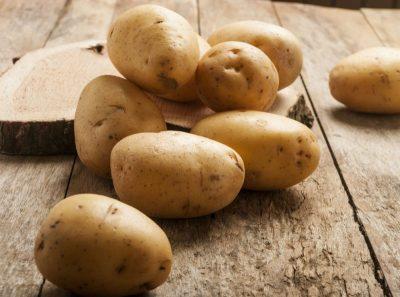 Выращивание картофеля от а до я часть1. репродукция картофеля столоны этиолированный стебель.