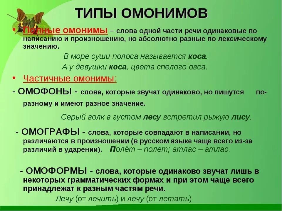 Что такое омонимы в русском языке: примеры предложений и таблица с разновидностями | tvercult.ru