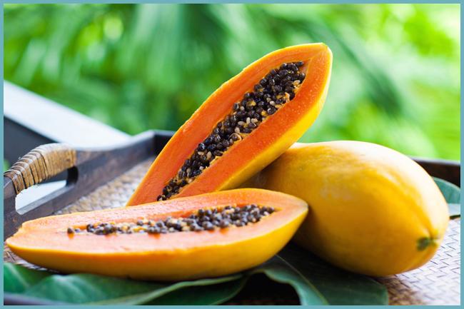 Фрукт папайя: фото, полезные свойства, вред, как его едят