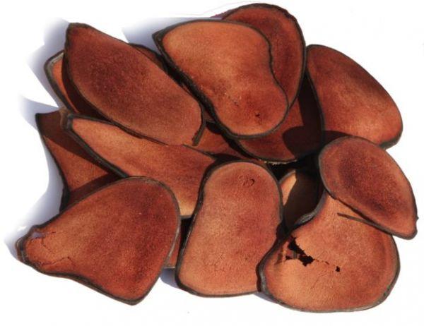 Панты марала алтайского: продукция, полезные свойства, препараты на основе