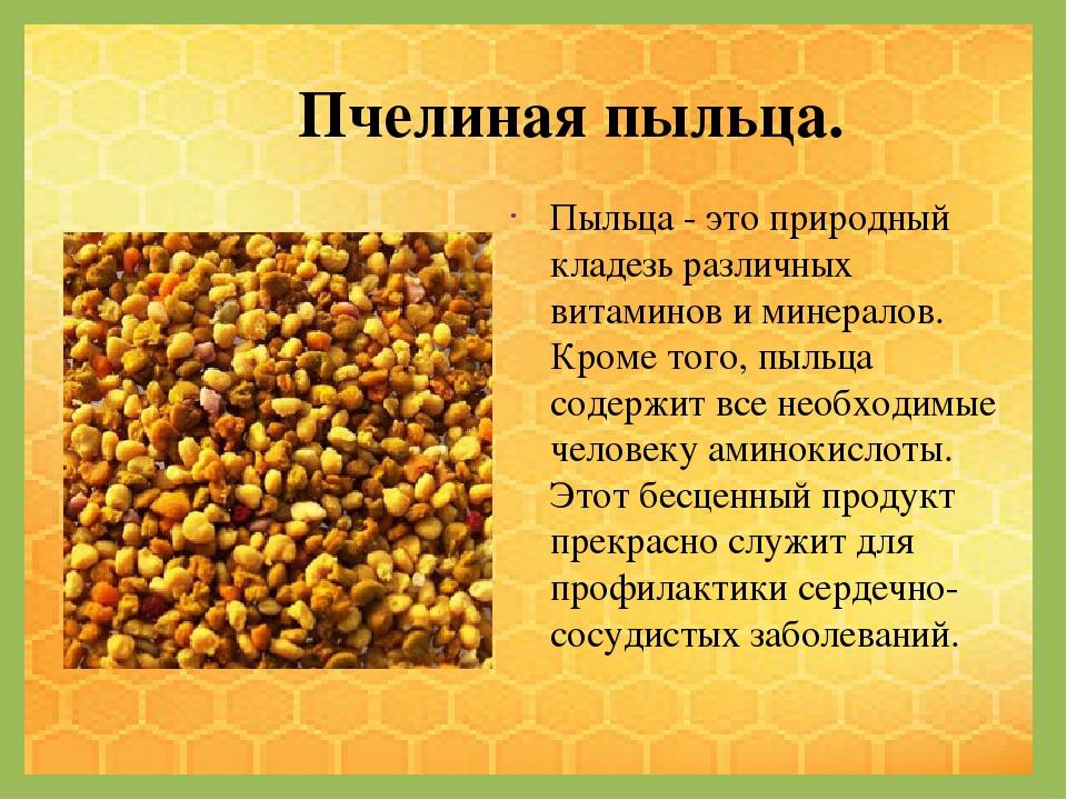 Перга пчелиная: полезные свойства, как принимать, применение, противопоказания