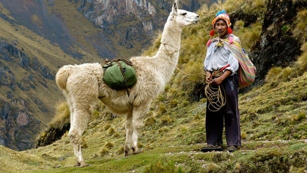Соодой лама мастер дзогчен реализовал радужное тело