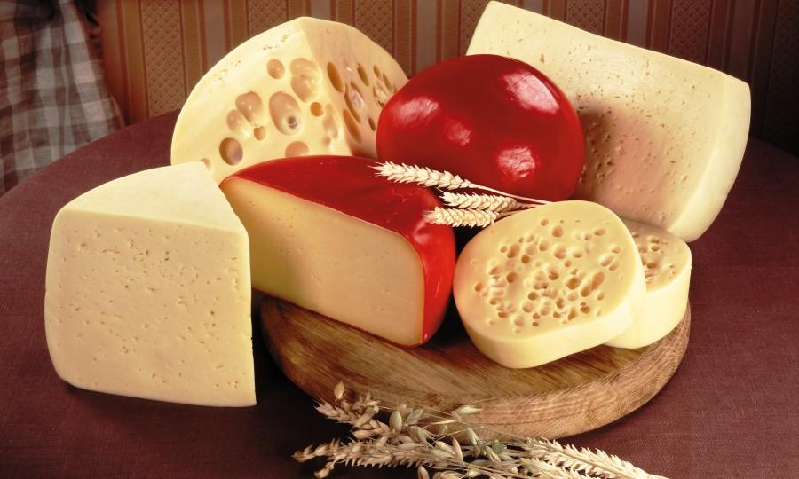 Пармезан (сыр): калорийность и полезные свойства. чем можно заменить сыр пармезан :: syl.ru