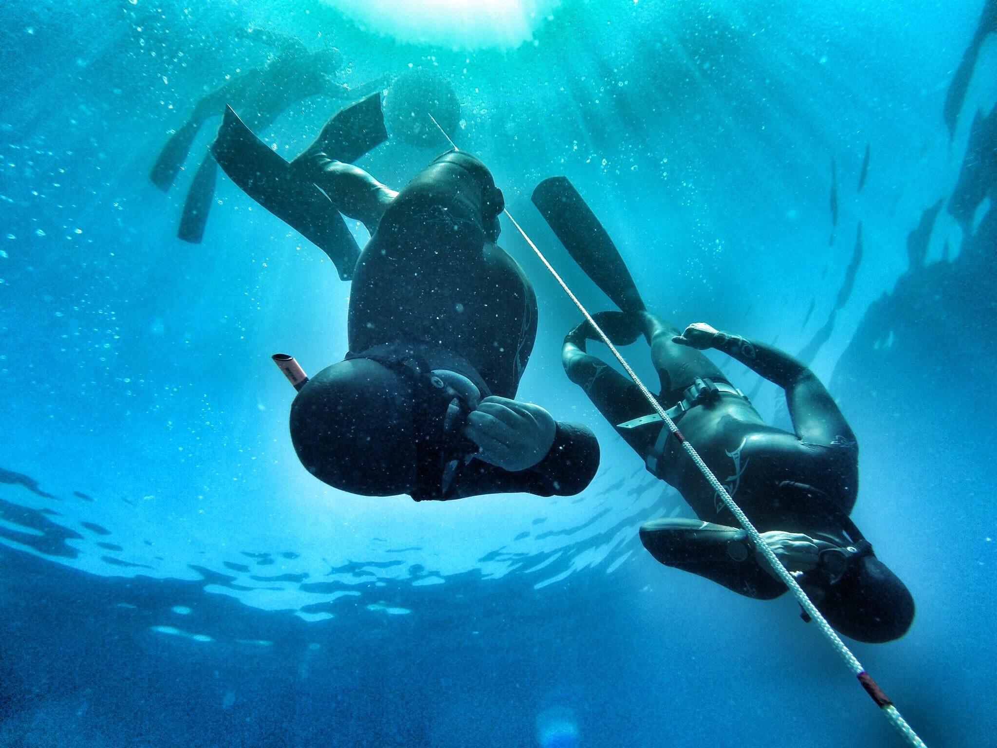 Фридайвинг - что это такое? подводное плавание с задержкой дыхания :: syl.ru