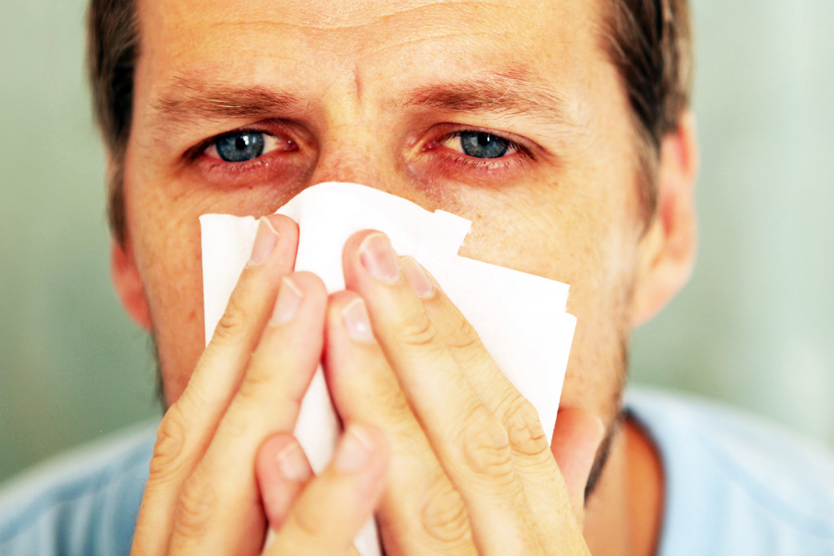 Ринорея. ринорея - о причинах, симптомах, лечении, народных средствах от болезни