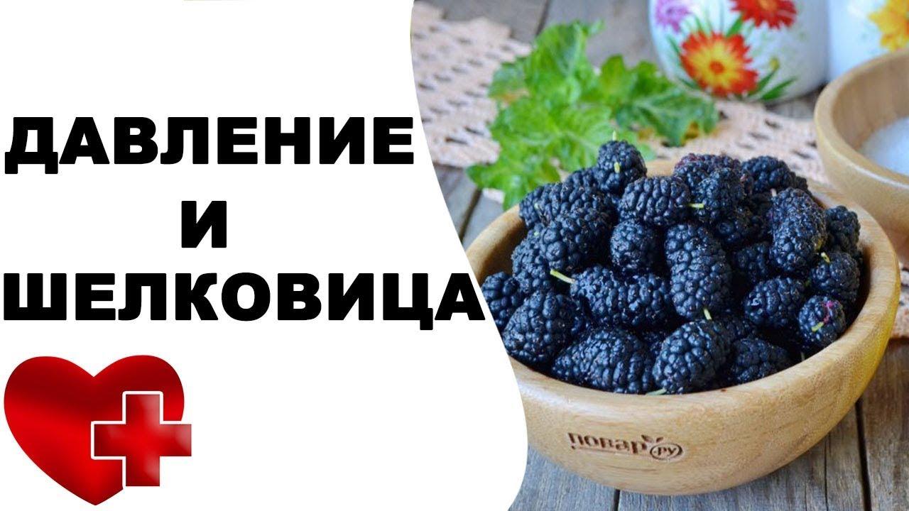 Шелковица - полезные и опасные свойства шелковицы