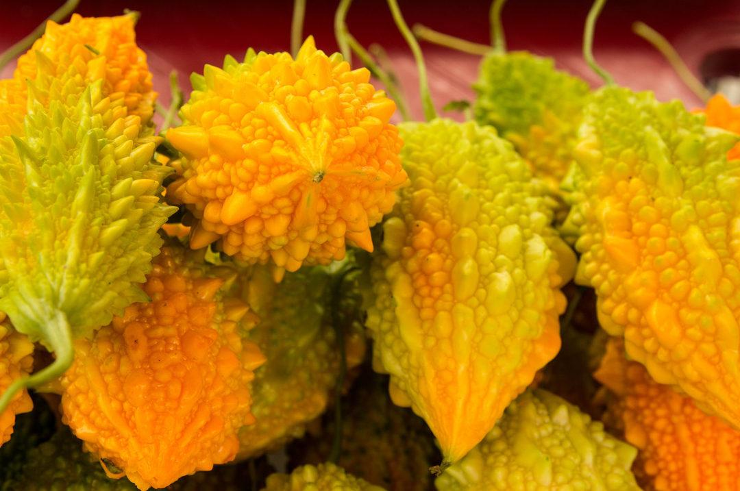 Выращивание момордики из семян в домашних условиях: когда сажать и как ухаживать